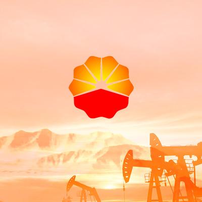 中国石油长庆分公司系列网站建设